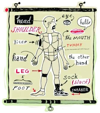 anatomy-chart