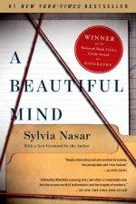 A Beautiful Mind Book