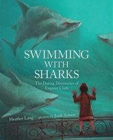 13-swimming-with-sharks
