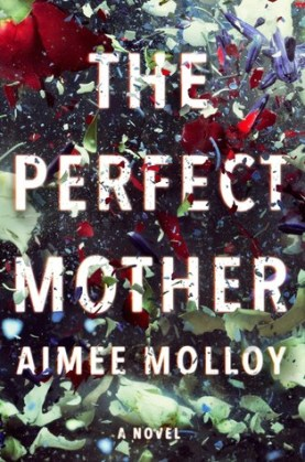 perfect-mother